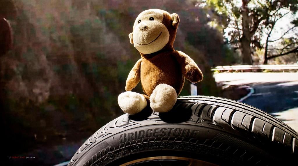 Jeffsache: Bridgestone Drive Guard