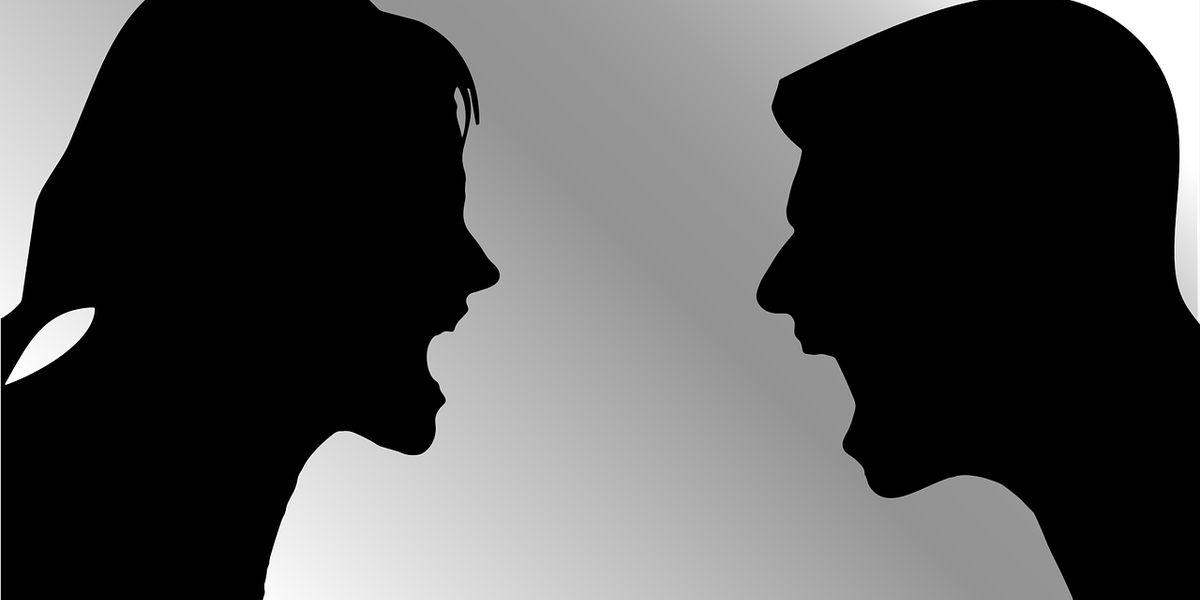 Peter Brandl: Meinungsdiktatur der Schreihälse