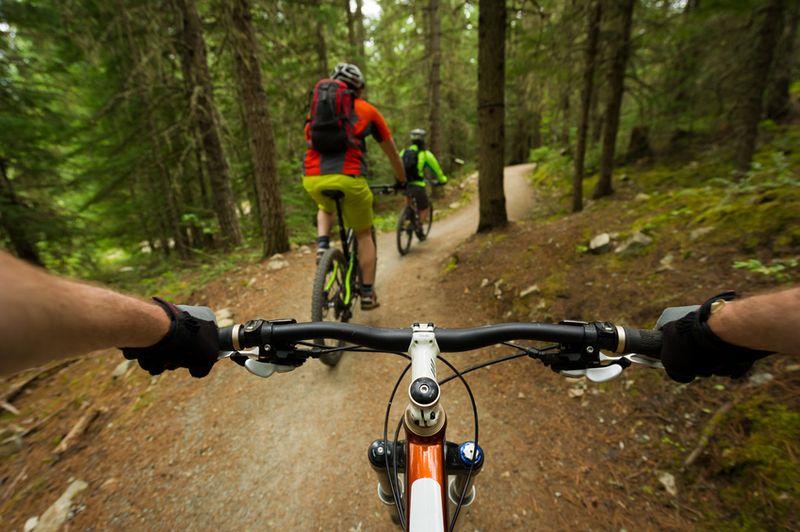 Vielfältiger Schwarzwald: Diese Urlaubsmöglichkeiten gibt es hier