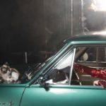 Miau: Opel Wonderland of Dreams