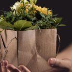 Passende Blumen für jeden Anlass: Darauf ist zu achten