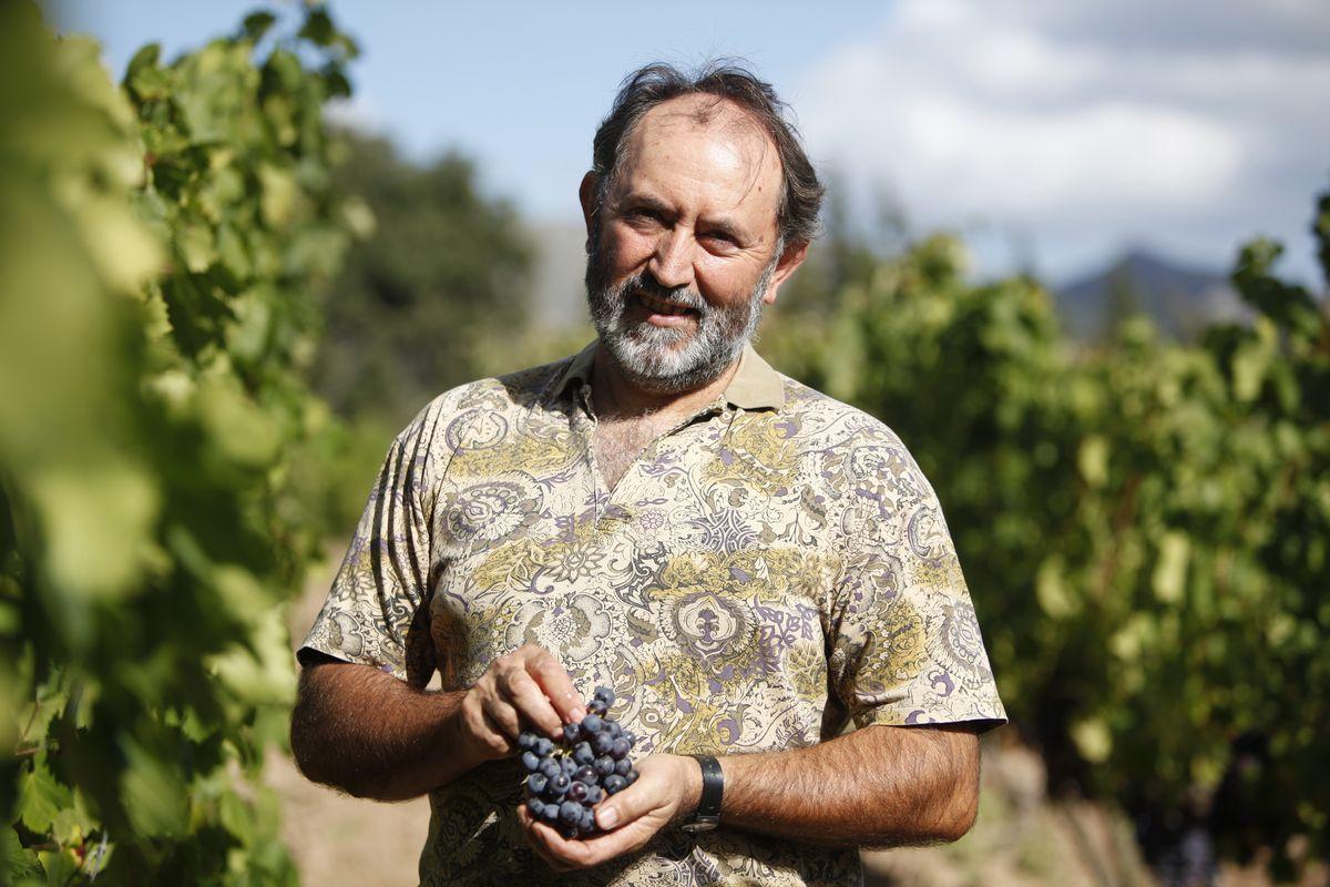 Vins Miquel Gelabert: Mallorquiner mit Prädikat