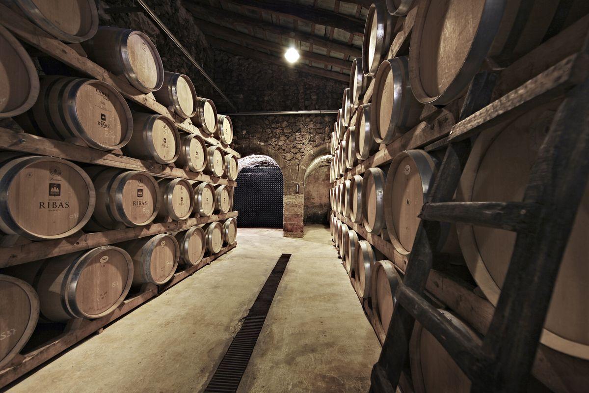 Ribas Weingut: 300 Jahre alte Weintradition