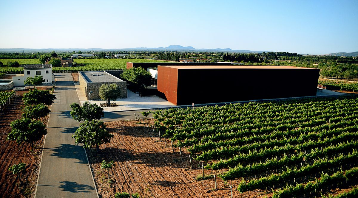 Celler Tianna Negre: Zusammenspiel von Wein und Design