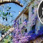 Pablo Picassos Immobilie steht zum Verkauf