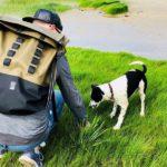 Chrome Urban Ex Rolltop 28 Backpack: Ganz praktisch und viel Platz
