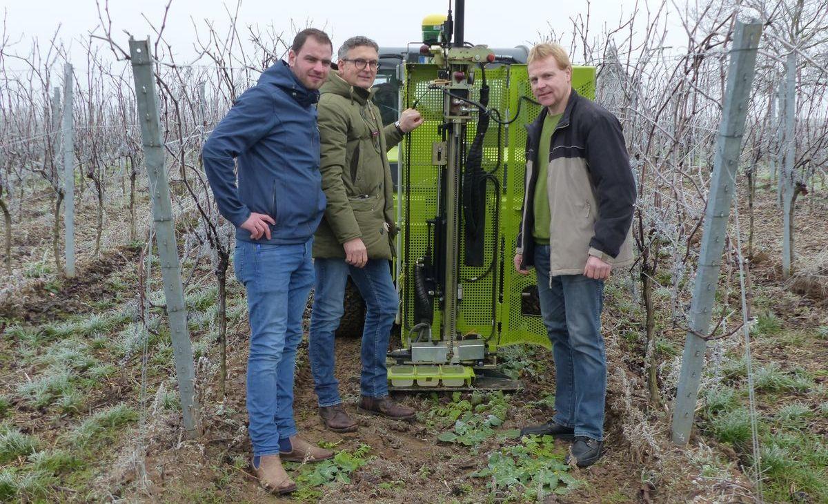 Winzer David Klenert nimmt gemeinsam mit Wolfgang Abler und Martin Ebert erste Bodenproben aus dem Weinberg.