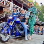 Der Harley-Künstler aus Freyung