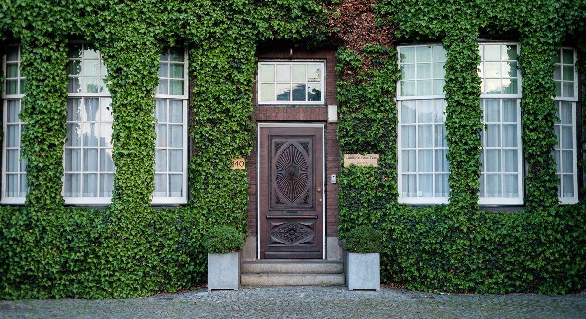 Passende Eingangstüren finden