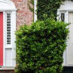 Immobilien: Welche Eingangstüre passt zum Eigenheim?