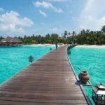 Sommerurlaub: Buchtipps zum Wegträumen