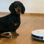 #Test Eufy RoboVac G10 Hybrid: Saugt und wischt kinderleicht